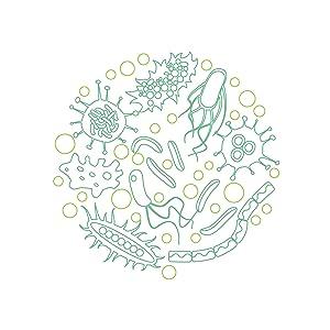 Probiotics 100 Billion CFU   Clinical Strength Probiotics for Women OmniBiotics