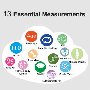 13 essential metris