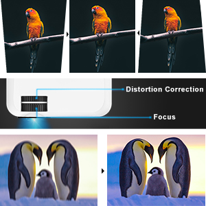 Distortion Correction and Focus