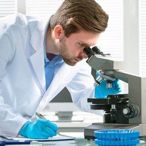 BioSchwartz Turmeric Curcumin with Bioperine (1500mg)