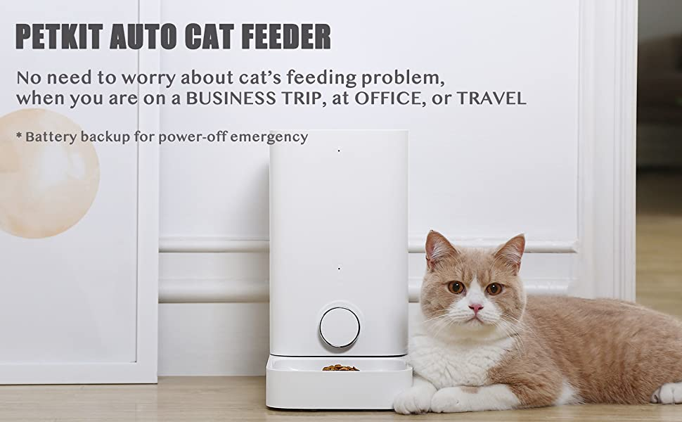 petkit auto feeder for cats dogs pets