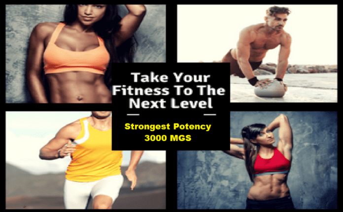 Take your fitness to the next level