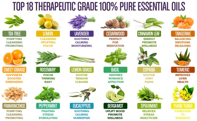 Chapter 4: Top 18 Essential Oils on the Market – natrogix.com