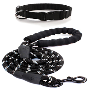 Dog Leash&Collar
