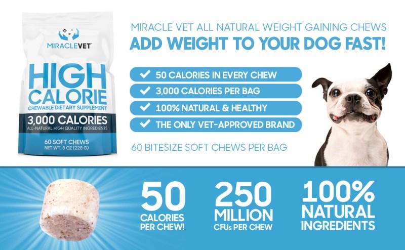 dog weight gainer, dog weight gain, dog weight supplement, dog supplement