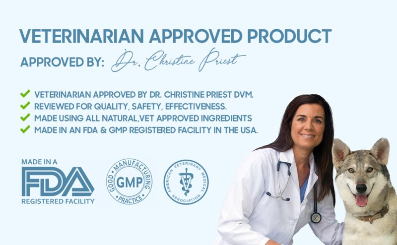 vet approved, dog supplements, dog weight gainer
