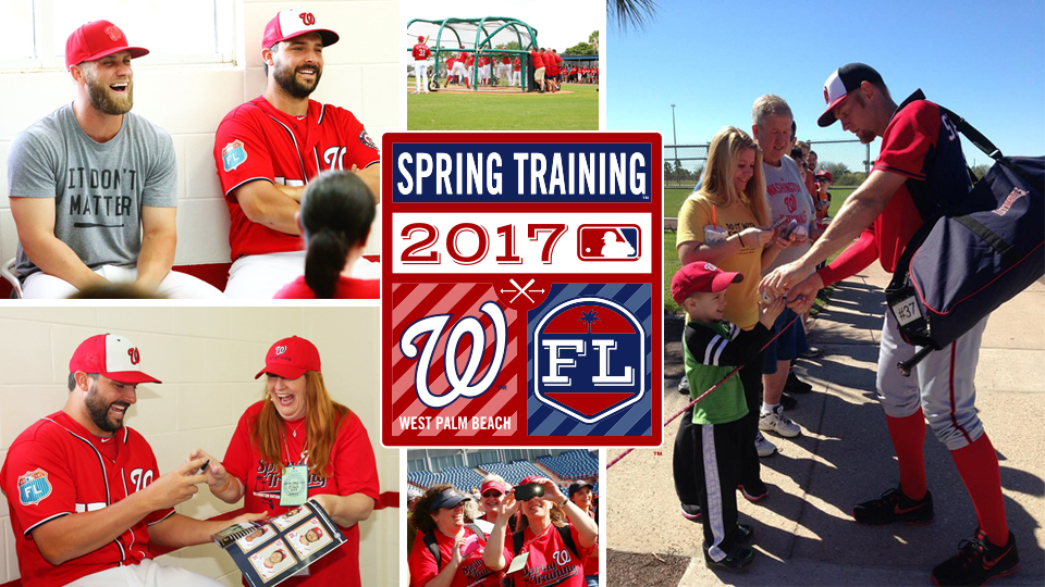 Image result for washington nationals the ballpark of the palm beaches