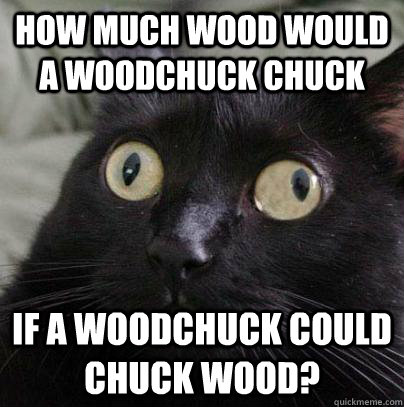 Image result for woodchuck meme