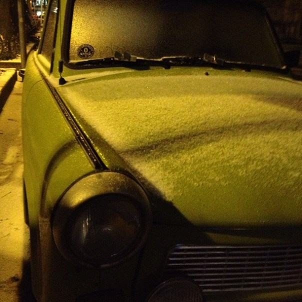 Wintertrabbi. #nofilter