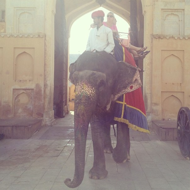 Elepgant ride to Amer Fort #India