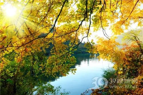 季节秋天树叶落叶湖山_14743575_xl