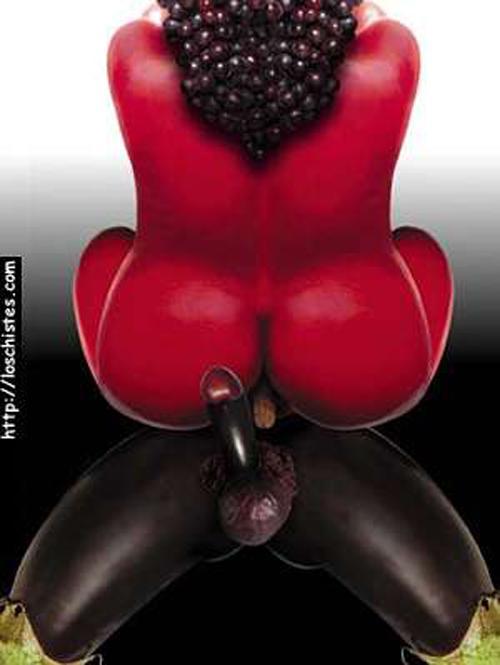 sexo organico