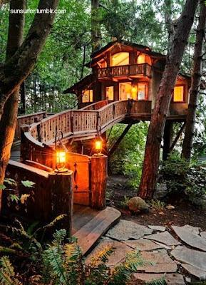 Casa del árbol.