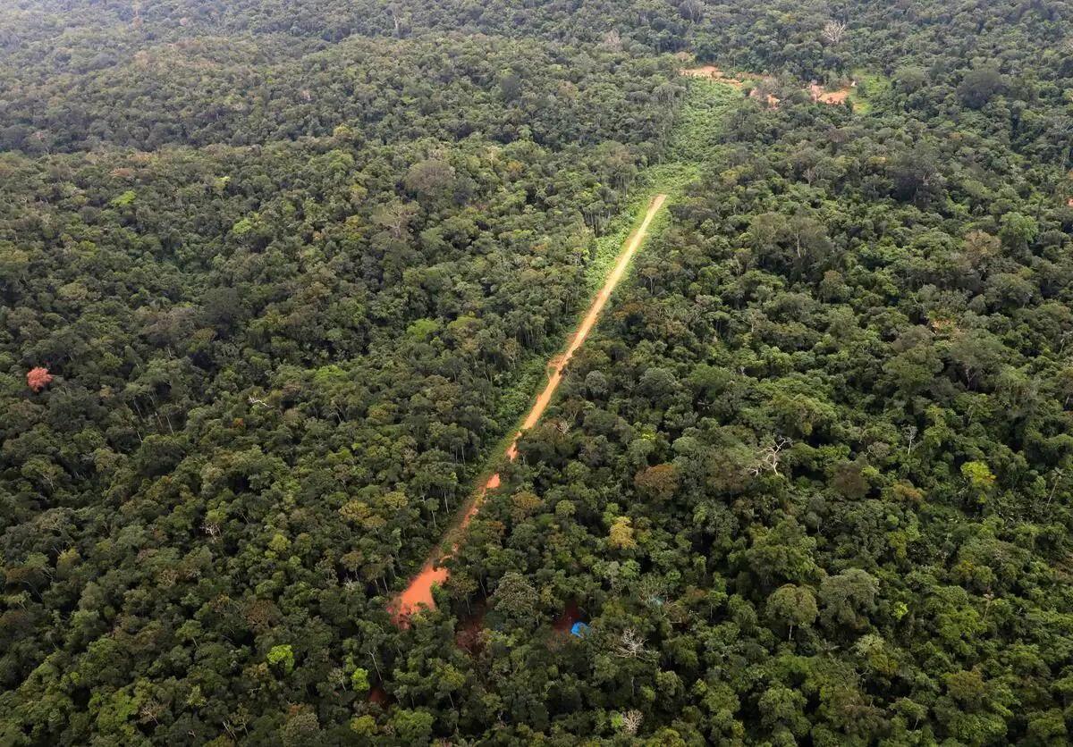 Le Brésil s'engage à « freiner la déforestation »