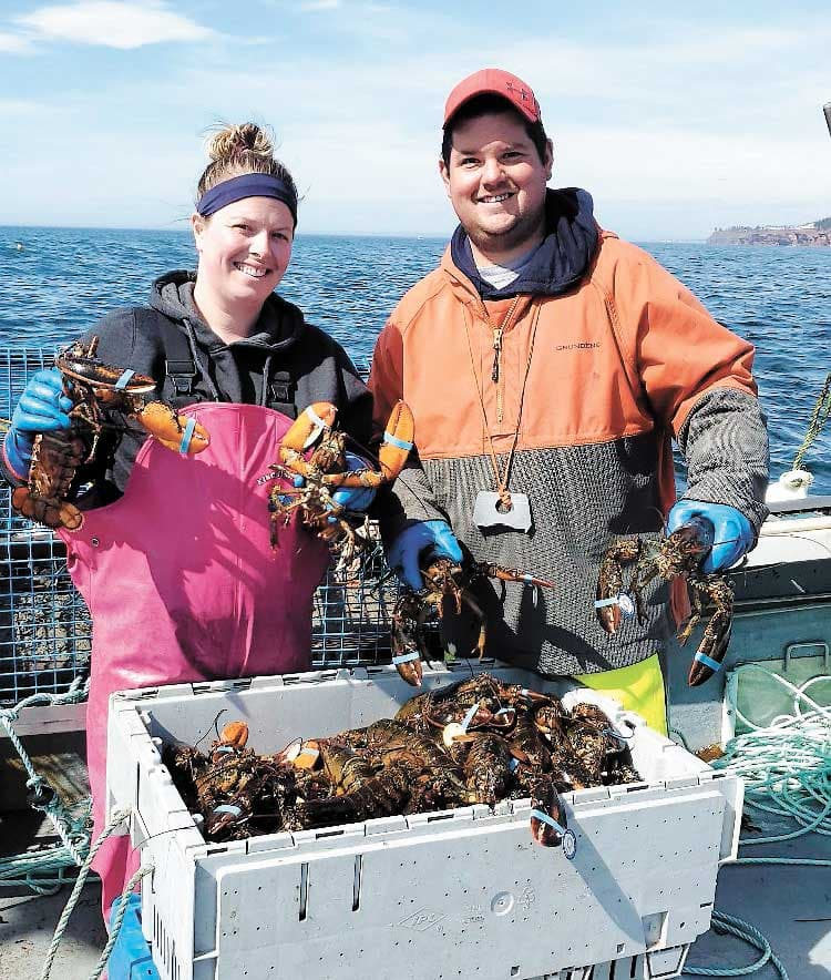 Prix très décevants pour les pêcheurs de homards
