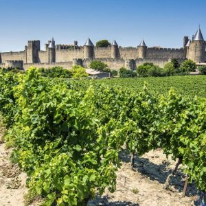 guided motorcycle tours france