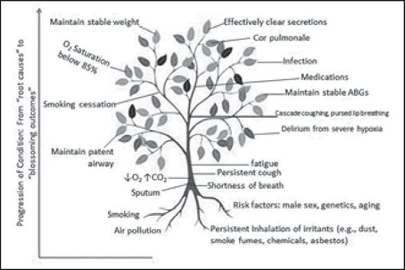 Use Of The Knowledge Tree As A Mind Map In A
