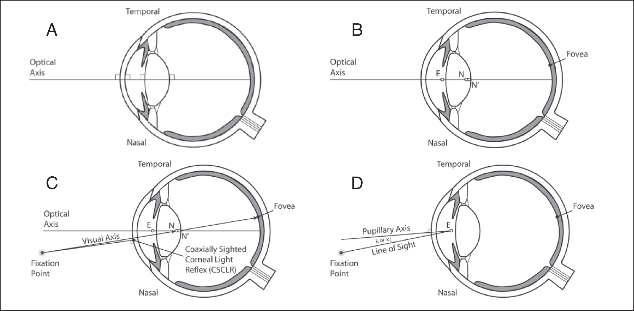 Eye Axes And Their Relevance To Alignment Of Corneal