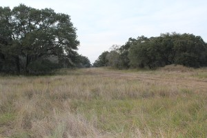 232 Acres For Sale – Lavaca County