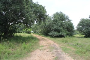 245 Acre Ranch For Sale – Garcitas River