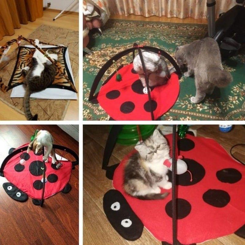 tapis de jeu pour chat