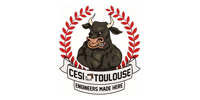 Logo Client CESI TOULOUSE (Ma Mascotte - fabrication sur mesure de mascottes et peluches).