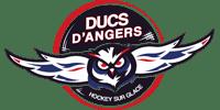 Logo Client DUCS D'ANGERS HOCKEY SUR GLACE (Ma Mascotte - fabrication sur mesure de mascottes et peluches).