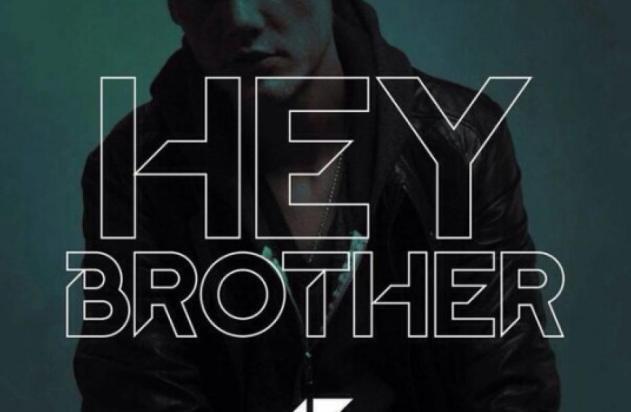 la cover du single Hey Brother d'Avicii
