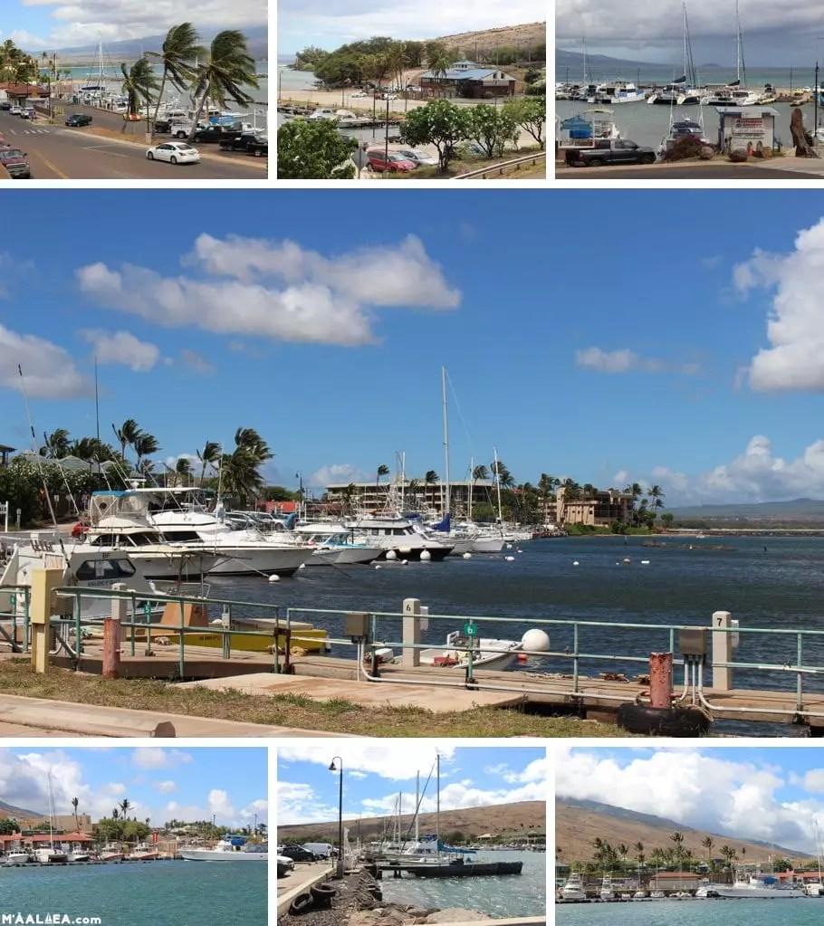 Maui Harbor