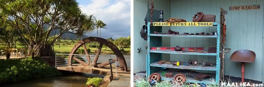 Maui Tropical Plantation history