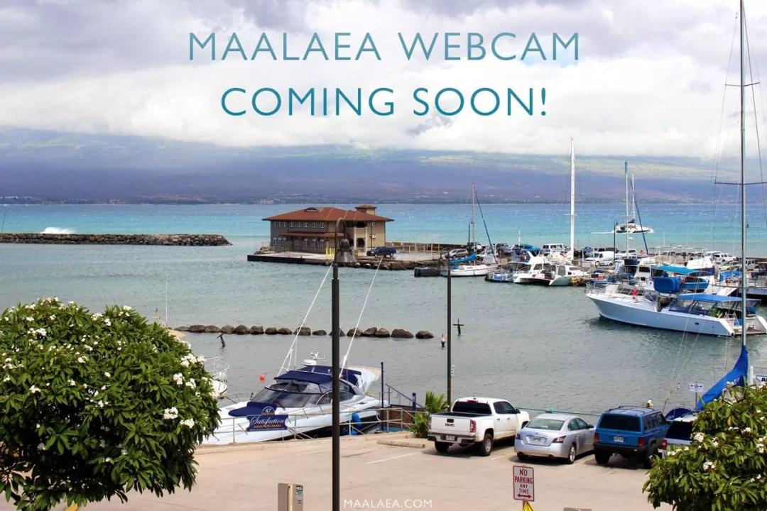 Maalaea webcam
