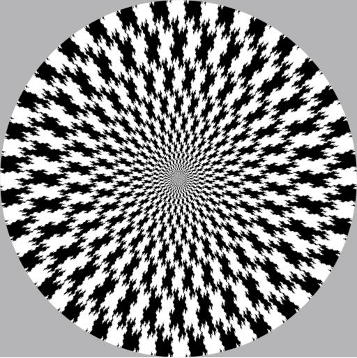 optical-illusion-copy