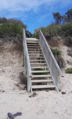 Wooden steps going from a beach into sand dunes.