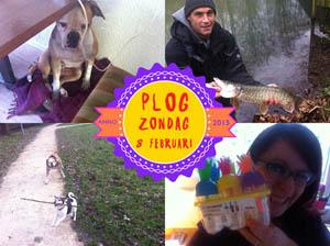 Vorig jaar gingen we wandelen met Nina en Scooby!