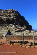 Cape Of Good Hope, Penguins & More- Cape Town Day 3