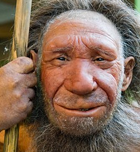 http://www.dailymail.co.uk/news/article-2265402/Wanted-Adventurous-woman-birth-Neanderthal-man--Harvard-professor-seeks-mother-cloned-cave-baby.html