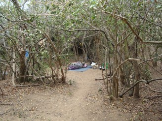 Mullikulam villagers forced to set up in jungle - Malankaadu - June 2012 - pic via NAFSO