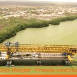 panorámica Viaducto El Gran manglar. Ciénaga la Virgen en Cartagena