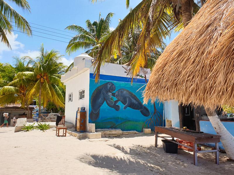 Réserve naturelle de Sian Kaan : Punta Allen, image non libre de droit.