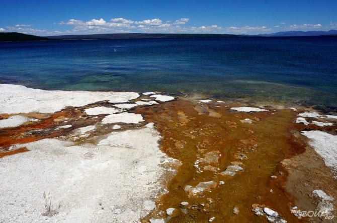 Sur la plage du lac Yellowstone !