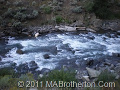 Some Rapids in the Mammoth River at Yellowstone National park