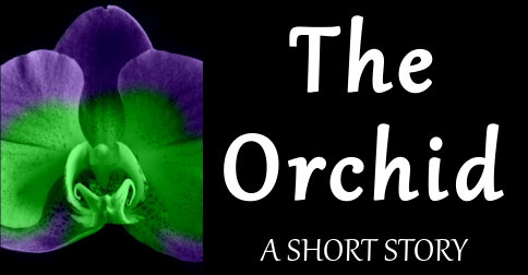 The Orchid - A Short Story