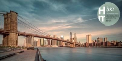 2014 IPA - I Am The Brooklyn Bridge - Mabry Campbell