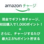オトクすぎる!Amazon1000ポイントをゲット出来る方法!