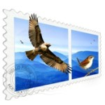 Mail_Perspectives