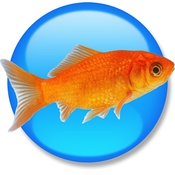 Goldfish_3_Professional_Edition_icon