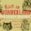 Creativemarket_Alice_In_Wonderland_Photoshop_Brushe_219125_icon.jpg