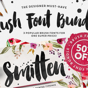 Creativemarket_The_Brush_Script_Bundle_50percent_OFF_264357_icon.jpg