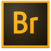 Adobe Bridge CC 2015 icon