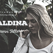 maldina_autumn_filters_ps_actions_392109_icon.jpg